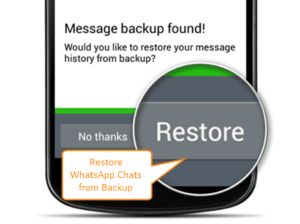 Restore Whatsapp Plus Chats