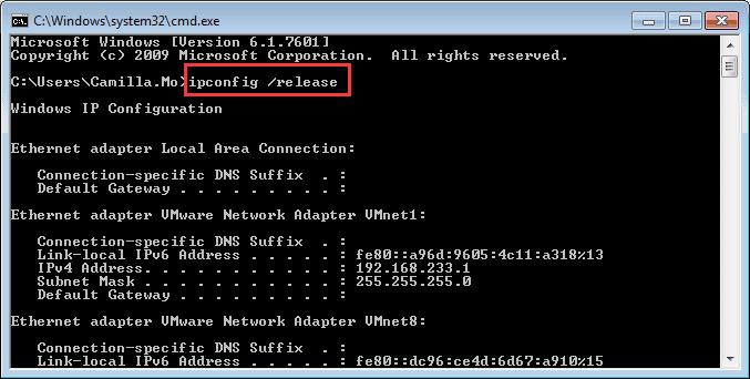 ipconfig:release