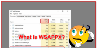 What is WSAPPX?