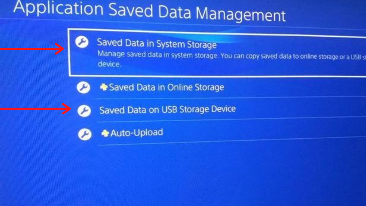 Saved Data in System Storage and Saved Data on USB Storage Device Option