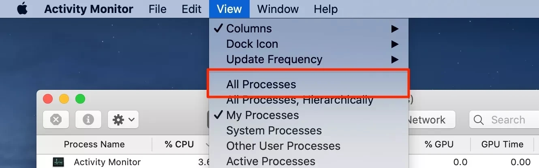 All Processes Option
